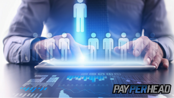 How to Pick the Right Pay Per Head Software and Tools