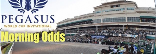 Pegasus World Cup 2020 Morning Odds