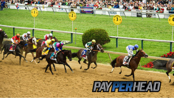 Triple Crown Betting: Preakness Stakes Odds and Predictions