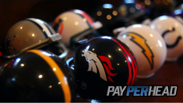 Profitable NFL Teams Pay Per Head Agents Should Know About