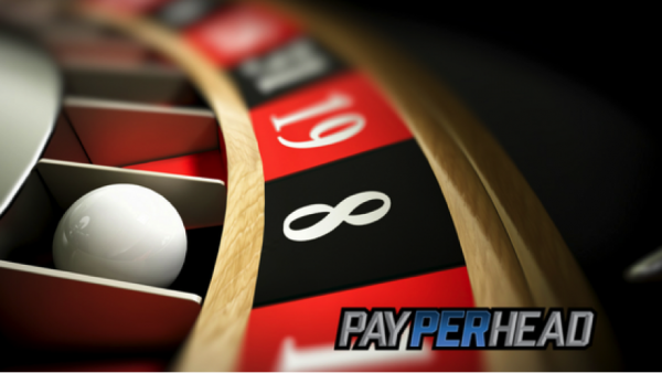3 Tips To Get Sports Bettors to Bookie Casino (And Why It's Important!)