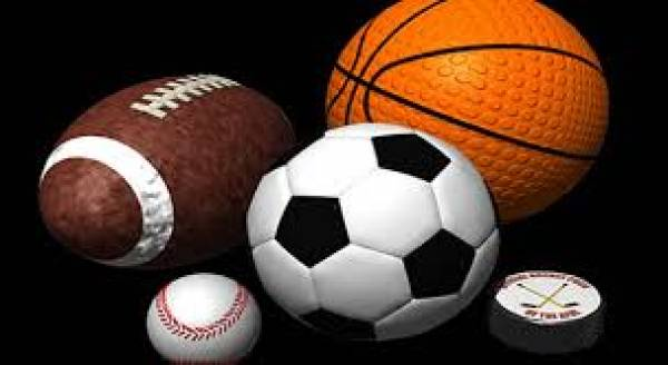 Sports Betting Platform Providers