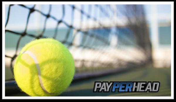 2017 Wimbledon Odds And Profitable Players
