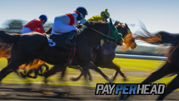 Online Bookie Agents: How To Promote the Triple Crown To Your Bettors