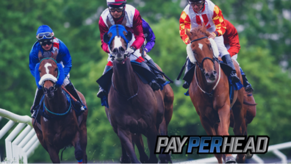 Triple Crown Betting: 2017 Kentucky Derby Odds + Predictions