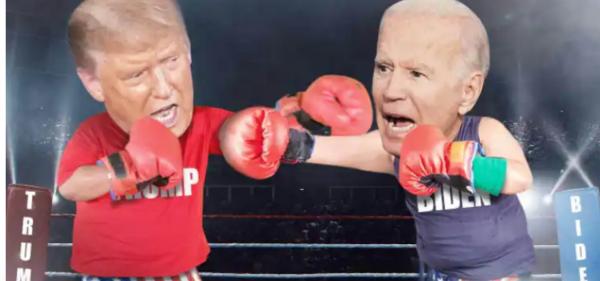 Biden vs. Trump Boxing Odds?