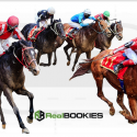 Real Bookies Has a Wide Variety of Betting Options