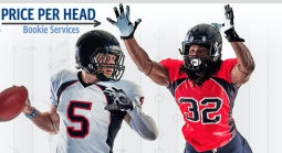 Houston Texans at Detroit Lions NFL Betting Preview