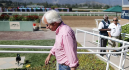 Bob Baffert Sorry Not Good Enough Says Dempsey