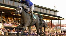 Essential Quality Payout Odds to Win the Belmont Stakes