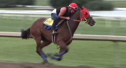Bet on the 2021 Smarty Jones Stakes
