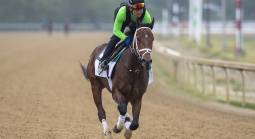 Overtook Payout Odds to Win the Belmont Stakes