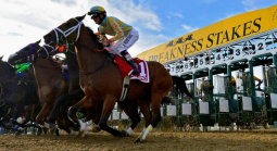 2021 Preakness Stakes Morning Odds