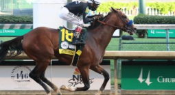 Preakness Payouts - Thousand Words, Mr. Big News, Max Player
