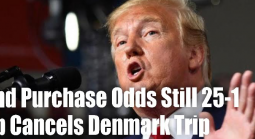Denmark Prime Minister Refuses to Talk Greenland Sale, Trump Cancels Trip, Odds Still 25-1