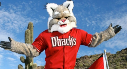 Arizona Diamondbacks Season Win Total Odds - 2020 60 Games