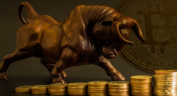 No Retail Crypto-Wide Bull Run Likely for Rest of 2020