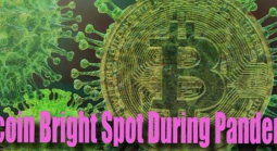 Bitcoin Bright Spot in Midst of Coronavirus Pandemic
