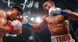 Find Software to Book Boxing Matches