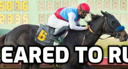 Preakness Stakes Odds 2021 After The Post Position Draw