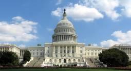 Congress Last Desperate Attempt to Set Up State Framework for Allowing Sports Betting