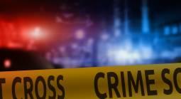 Vegas Strip Crime