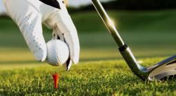 Live Golf Odds - Pay Per Head