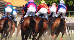 A Quick Guide to Betting on Horse Racing