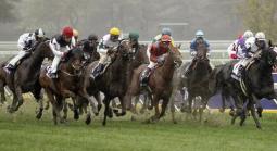 Belmont, Churchill Down Betting: 2021 Locust Grove Stakes, Jockey Club Oaks and Derby
