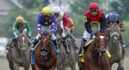 Where Can I Bet the Preakness Stakes Online From Florida?