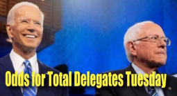 Odds for Total Delegates Won by Each Candidate on Tuesday