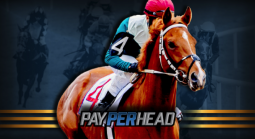 Should Online Bookies Offer Pony Betting In Their Sportsbook?