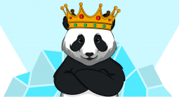 Revpanda - Digital Marketing Agency That Focuses on iGaming Launches Casinobee.com