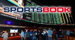 Best Website to Start a Sportsbook