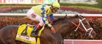What Will the Payout Be If Always Dreaming Wins the Preakness Stakes?
