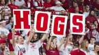 Free Pay Per Head for Arkansas Sports Bettors as Basketball Team Leads SEC