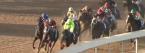 2017 Belmont Stakes Expert Picks, Betting Analyis