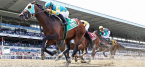 Essential Quality Set as 2-1 Favorite for Belmont Stakes, Draws No. 2 Post