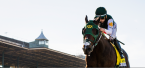Bolt D'Orbo Odds to Win the 2018 Kentucky Derby