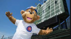 Bet the Chicago Cubs: Important Trends and Odds to Win