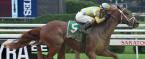 Flameawy Payout Odds 2018 Kentucky Derby