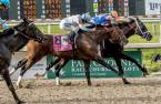 Lone Sailor Post Position Chances of Winning the Kentucky Derby