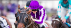 Mendelssohn Post Position Chances of Winning the Kentucky Derby