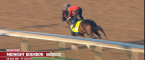 Horse Racing Odds – 2021 Preakness Stakes Longshots