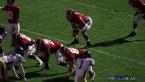 NCAA Week 14 Odds and Picks for Online Bookies