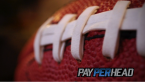 Where Can I Watch, Bet the Super Bowl Online From Portland Maine