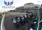 Best Pay Per Head for the Pegasus World Cup