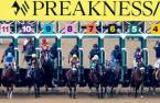 Latest 2021 Preakness Stakes Odds