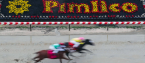 2019 Preakness Stakes Morning Odds