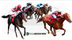 Important Features of a PPH Sportsbook